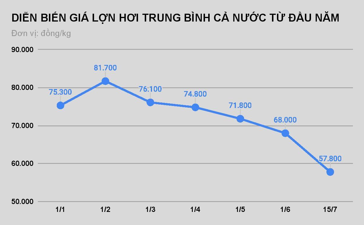 Giá lợn hơi xuống mức thấp nhất trong gần 2 năm - Ảnh 1.