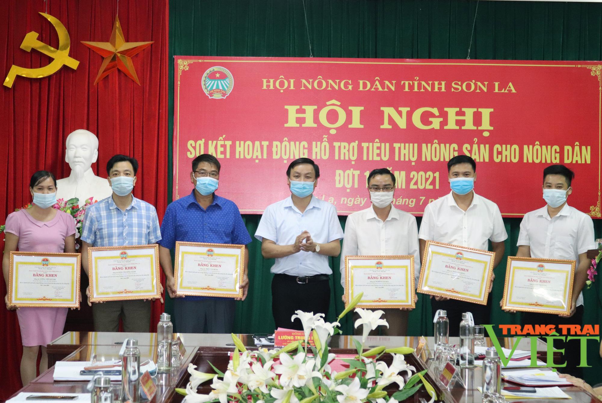Các cấp Hội Nông dân tỉnh Sơn La hỗ trợ tiêu thụ gần 5.000 tấn nông sản - Ảnh 4.