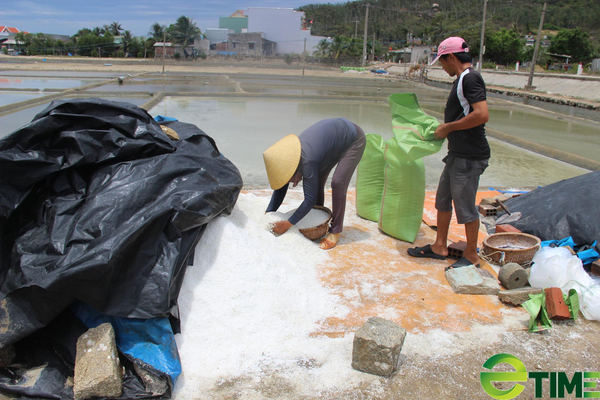 Bình Định: Giá 1kg muối không bằng cốc trà đá, diêm dân không còn mặn mà - Ảnh 2.