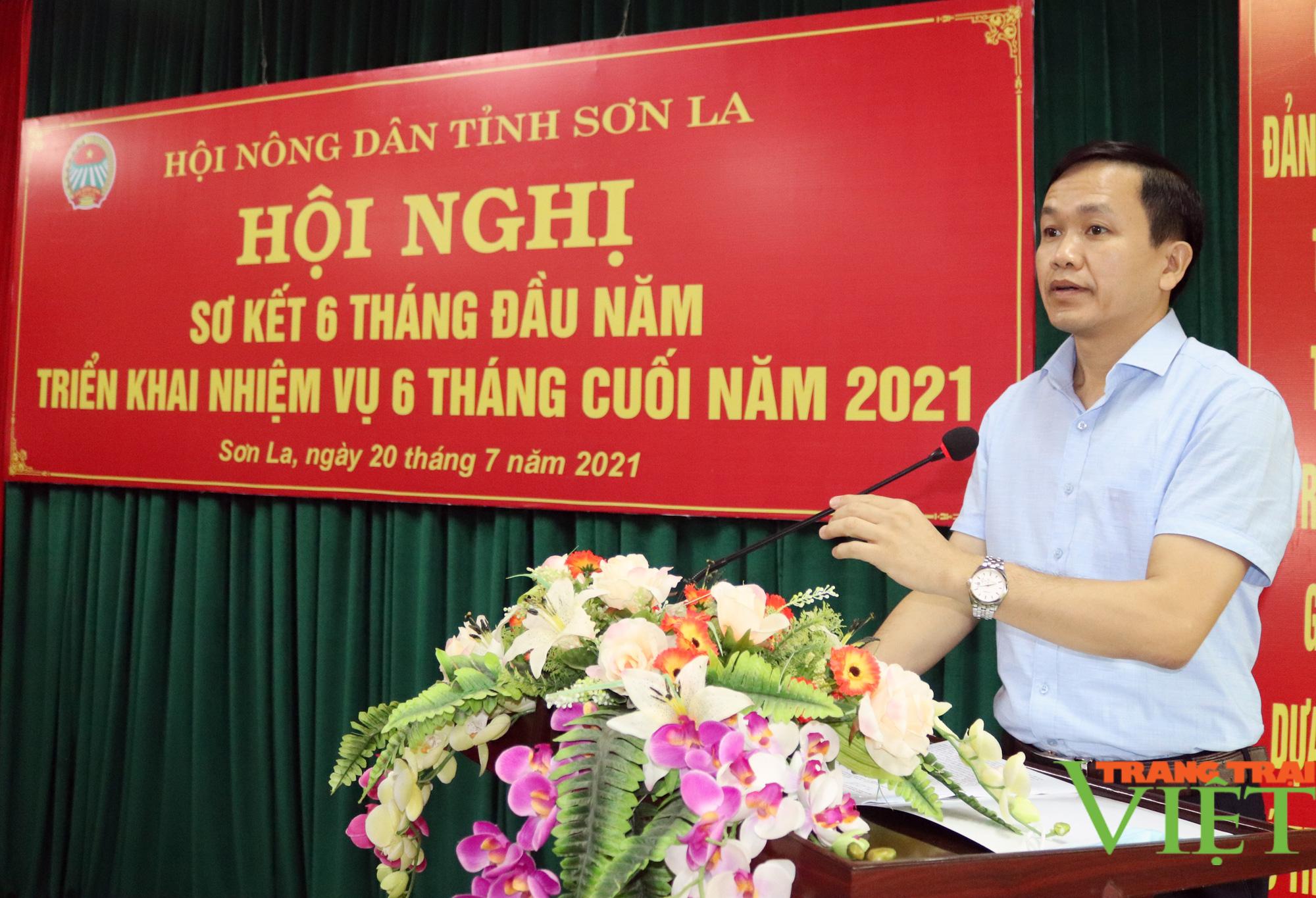 Sơn La có 80.682 hộ đăng ký đạt danh hiệu hộ nông dân sản xuất, kinh doanh giỏi các cấp - Ảnh 3.