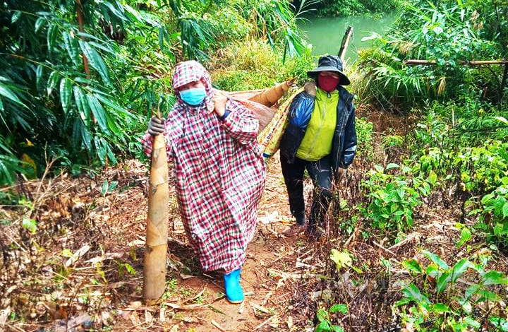 Nông dân Đắk Nông gom hàng trăm tấn nông sản hỗ trợ người dân vùng dịch - Ảnh 6.