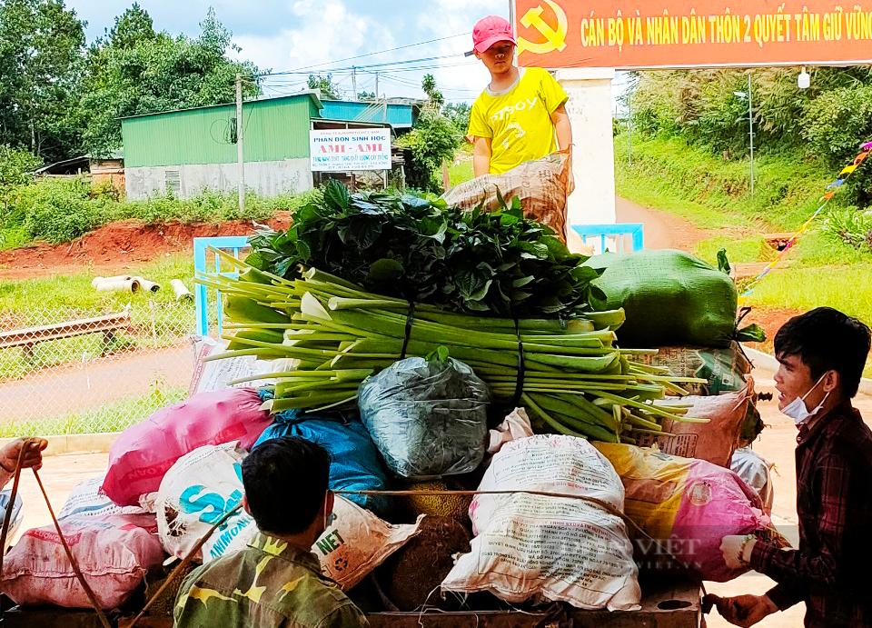 Nông dân Đắk Nông gom hàng trăm tấn nông sản hỗ trợ người dân vùng dịch - Ảnh 10.