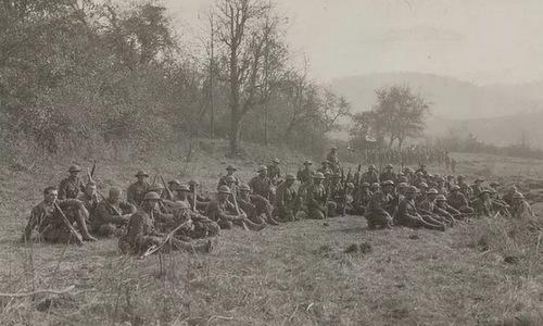 200 lính Mỹ thoát chết trong Thế chiến I nhờ... 1 con chim bồ câu - Ảnh 3.