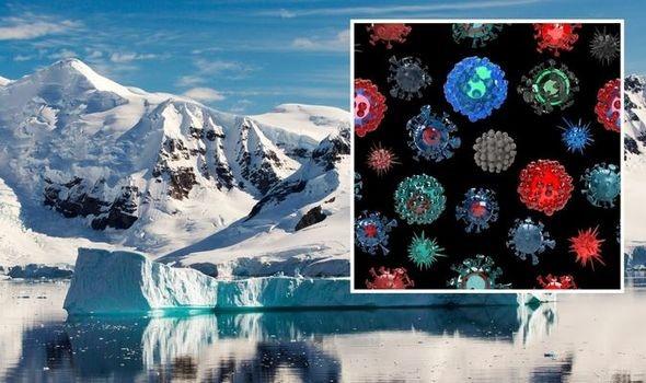 Tìm thấy 28 loài virus mới ở sông băng Trung Quốc - Ảnh 1.