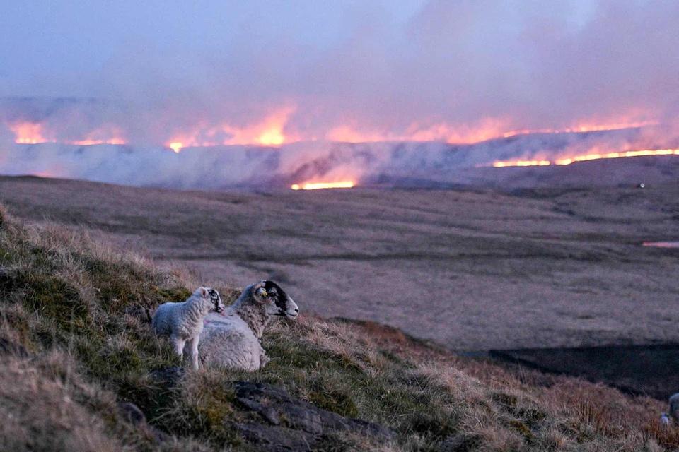 Những bức ảnh thể hiện sự khủng khiếp của biến đổi khí hậu - Ảnh 4.