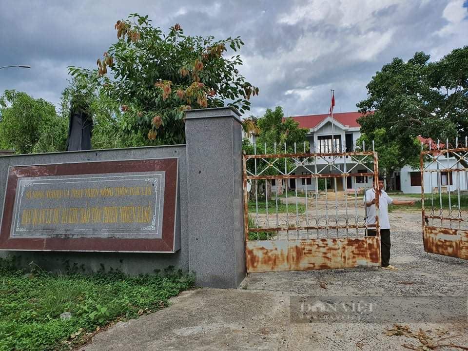 Đắk Lắk: Nhận hối lộ để lâm tặc phá rừng, Trạm trưởng Kiểm lâm bị khởi tố - Ảnh 2.