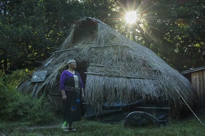 """Bộ lạc thổ dân Mapuche được săn đón với phương thuốc bí truyền """"tăng cường chuyện gối chăn"""" - Ảnh 3."""