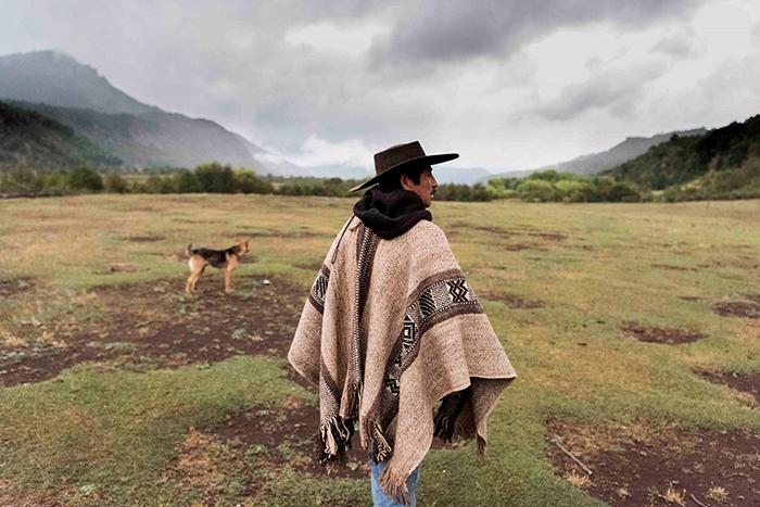 """Bộ lạc thổ dân Mapuche được săn đón với phương thuốc bí truyền """"tăng cường chuyện gối chăn"""" - Ảnh 4."""