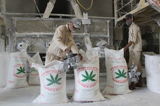 Việt Nam bán hết sắn cho Trung Quốc làm thức ăn chăn nuôi rồi chi 6 tỷ USD nhập ngô, đậu tương làm nguyên liệu - Ảnh 1.