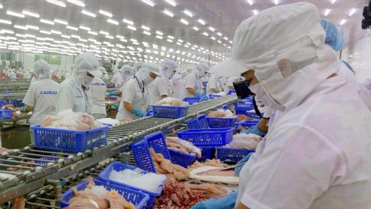 Xuất khẩu thủy sản sang EU tăng 20% - Ảnh 1.