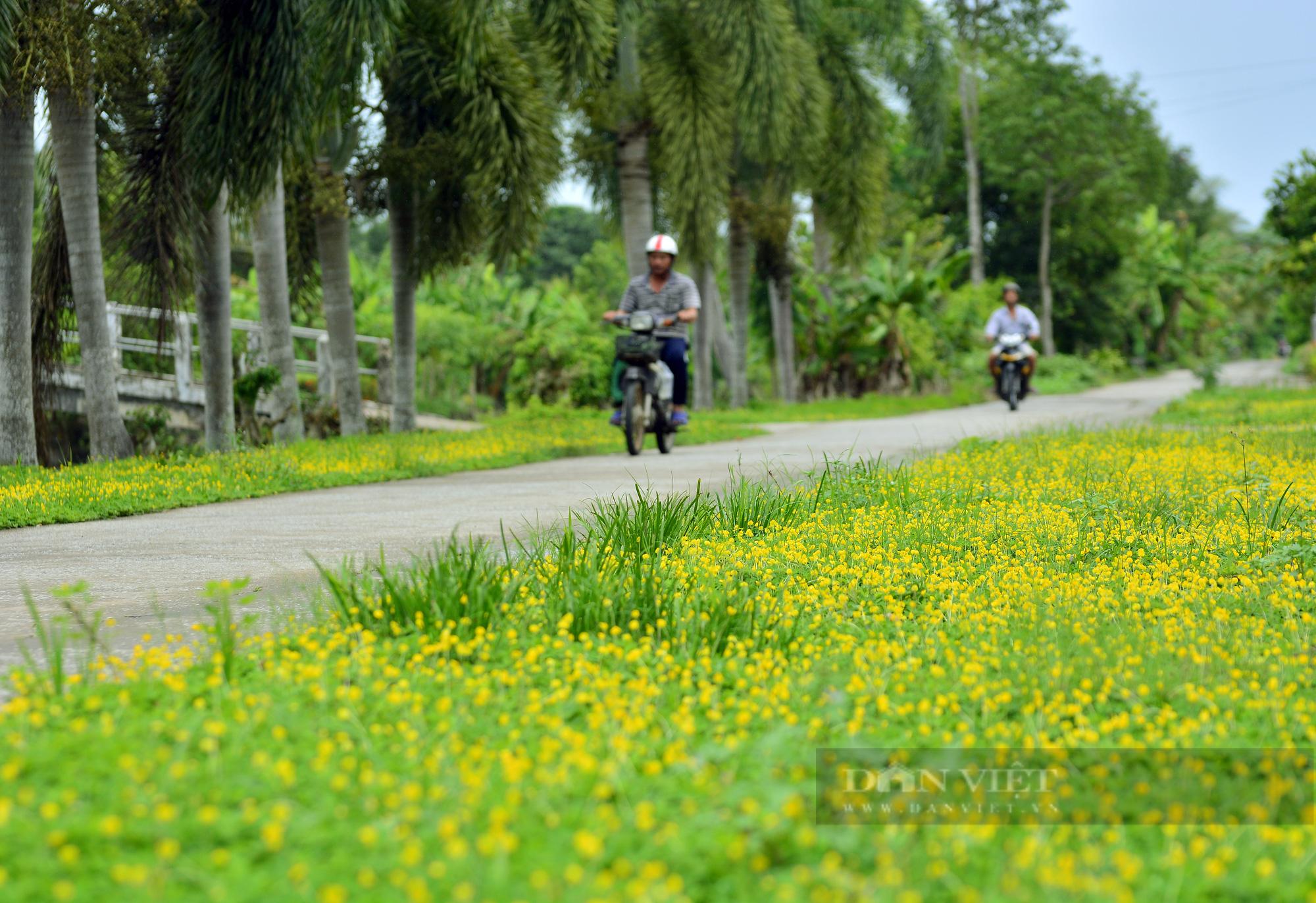 ĐBQH, Chủ tịch Hội Nông dân Việt Nam Lương Quốc Đoàn lo ngại nông dân thu nhập thấp đóng góp nhiều - Ảnh 4.
