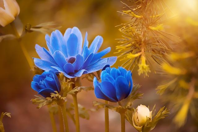 Người sinh vào khung giờ Âm lịch này chỉ cần nỗ lực, cả đời hưởng phúc, vạn sự hanh thông - Ảnh 2.