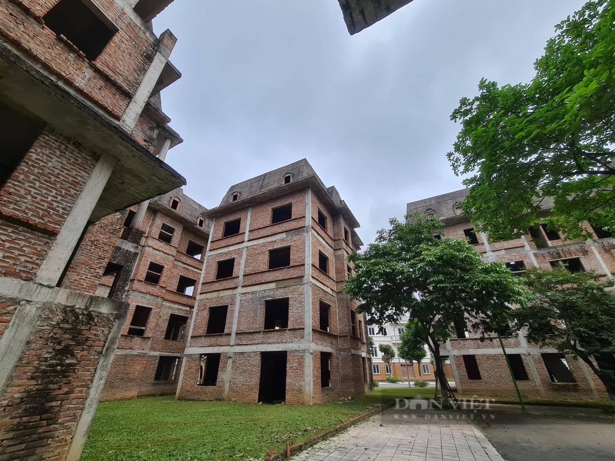 Sóng cắt lỗ bất động sản sẽ còn tiếp diễn trong nửa cuối năm - Ảnh 2.