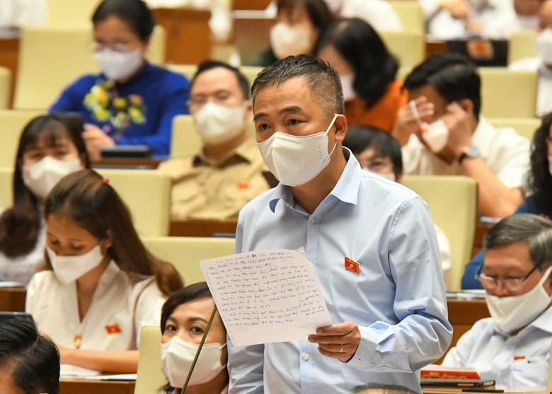 ĐBQH, Bác sĩ Nguyễn Lân Hiếu nói về giải pháp giảm tỷ lệ tử vong với người mắc Covid-19 - Ảnh 1.