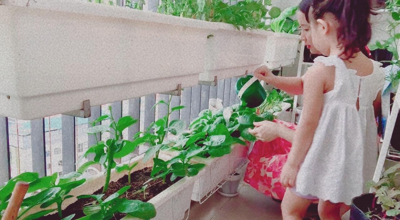 Ban công 7m2 vẫn đủ rau ăn cho cả nhà trong mùa dịch giãn cách ở Hà Nội - Ảnh 10.