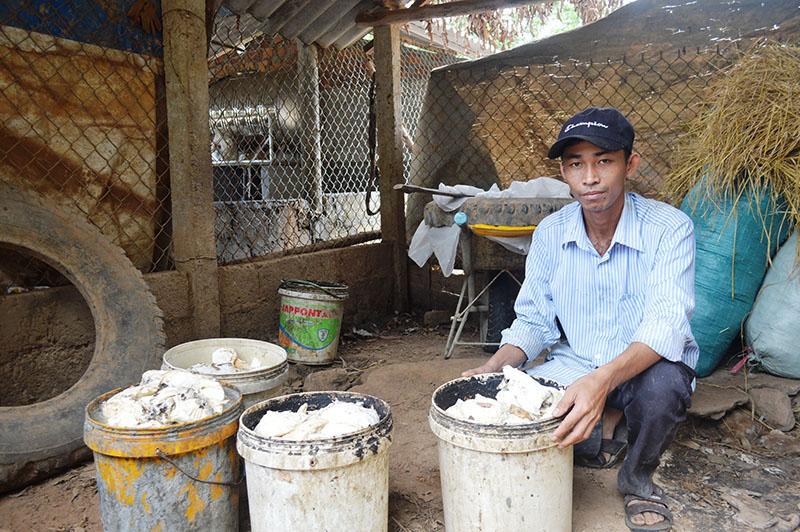 Quảng Trị: Loài cây suốt 10 năm trời mất giá chán chê, nay dân cứ xách thùng ra vườn là có tiền triệu - Ảnh 3.