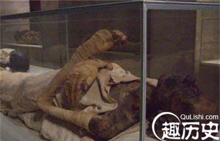 Cung nữ được tuẫn táng trong lăng mộ của Tần Thủy Hoàng là ai? - Ảnh 3.