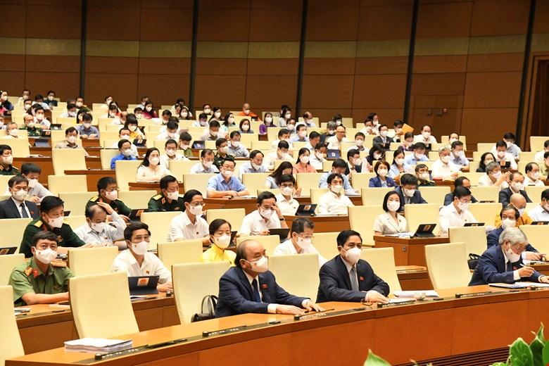 Quốc hội có 4 đại biểu là thương binh, 17 đại biểu là con liệt sĩ - Ảnh 1.