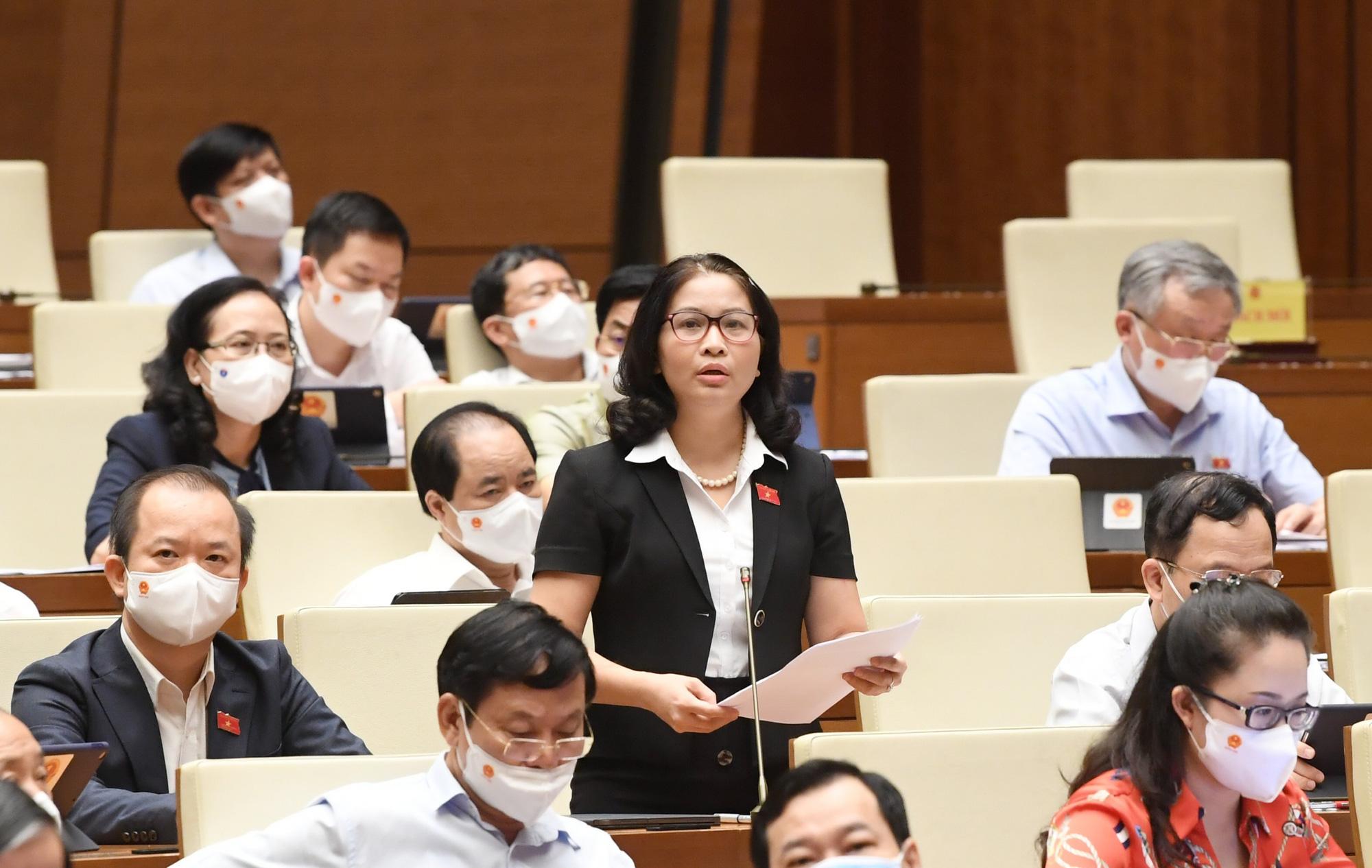 Giám đốc Học viện Nông nghiệp Việt Nam đề xuất mô hình nông thôn mới kiểu mẫu cho ngoại thành Hà Nội - Ảnh 1.