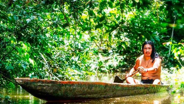 """Trải nghiệm nghi lễ của thổ dân Kichwa Añangu với """"cây thiêng"""" giúp gia tăng hưng phấn tình cảm - Ảnh 4."""