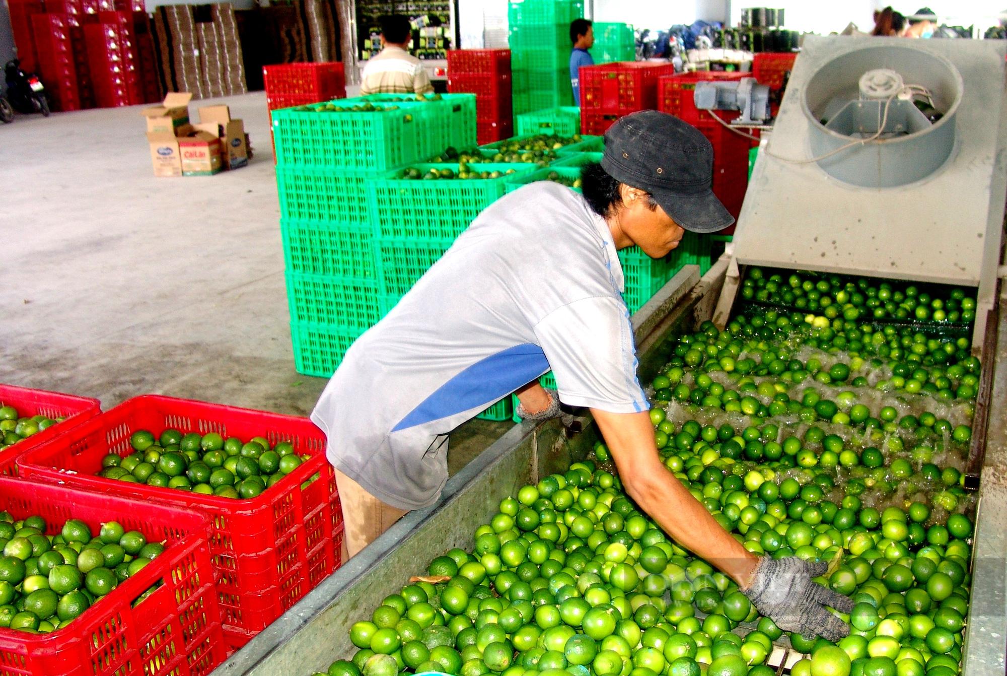 Dịch bùng phát, nông dân làm nông sản theo cách này rộng đường lên kệ siêu thị - Ảnh 1.