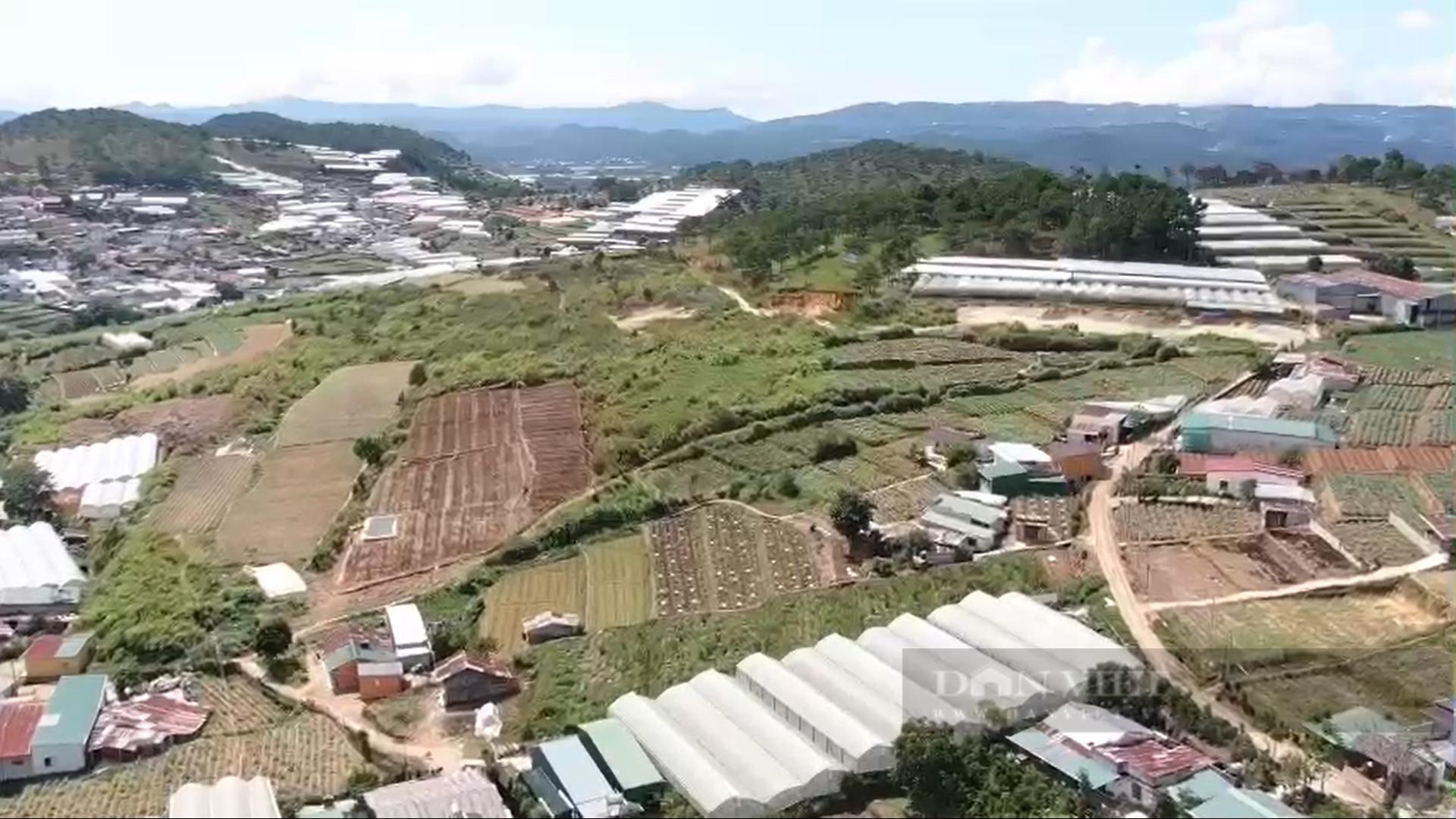 Lâm Đồng: Dự án khu dân cư treo 12 năm, chủ đầu tư có đủ năng lực? - Ảnh 1.