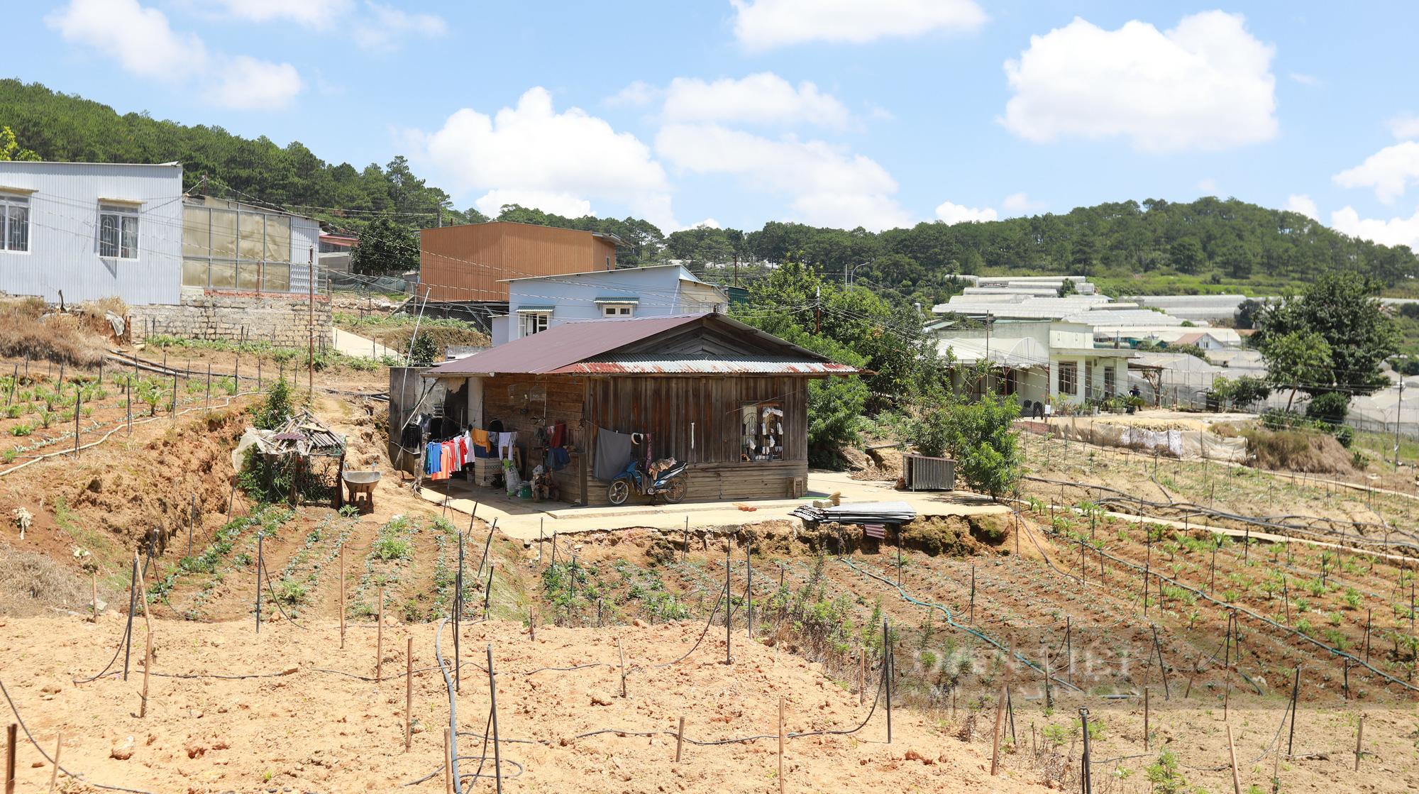 Lâm Đồng: Dự án khu dân cư treo 12 năm, chủ đầu tư có đủ năng lực? - Ảnh 4.
