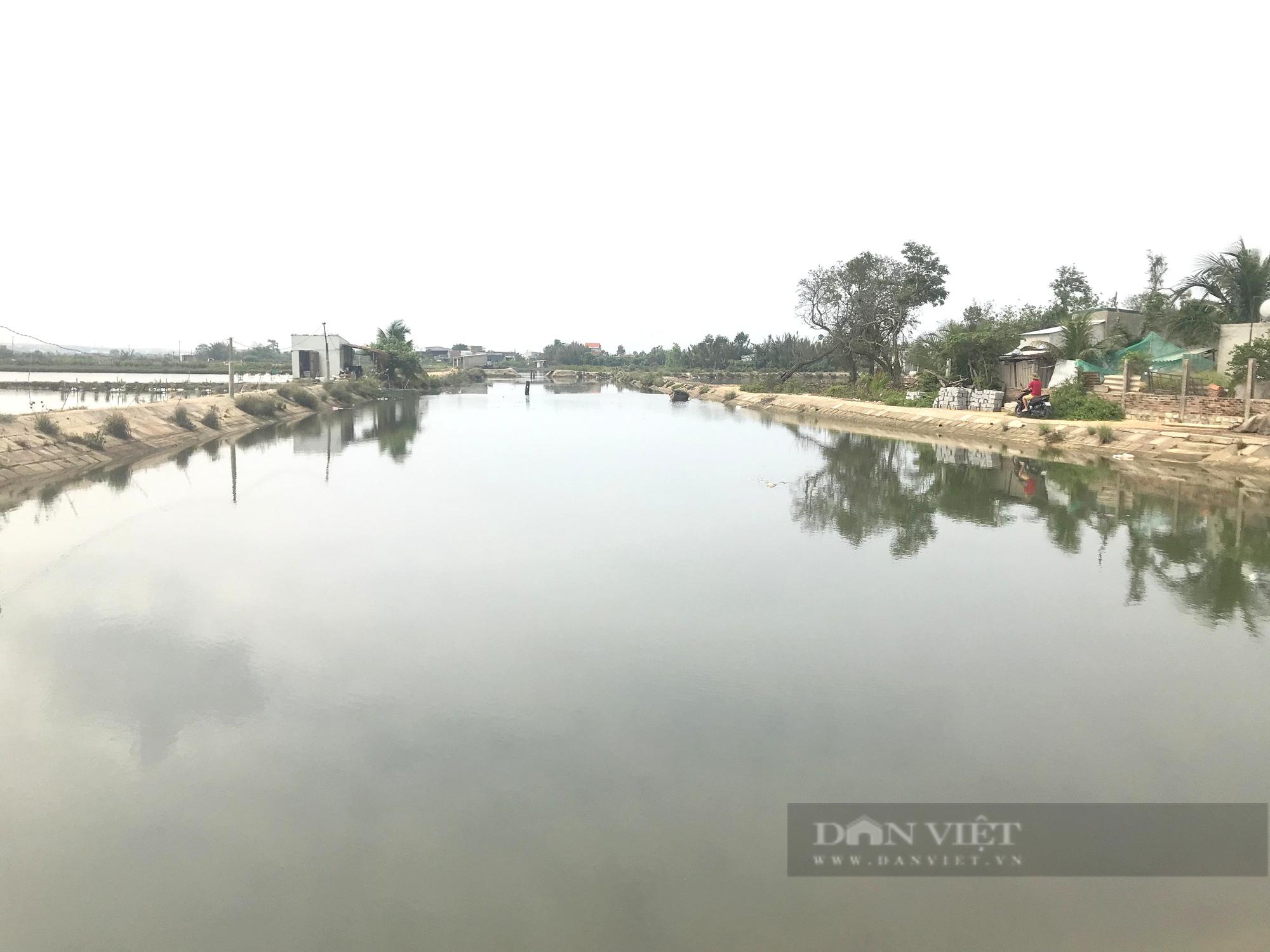 """""""Gỡ khó"""" cho nông dân Bình Định giữa đại dịch Covid-19  - Ảnh 3."""