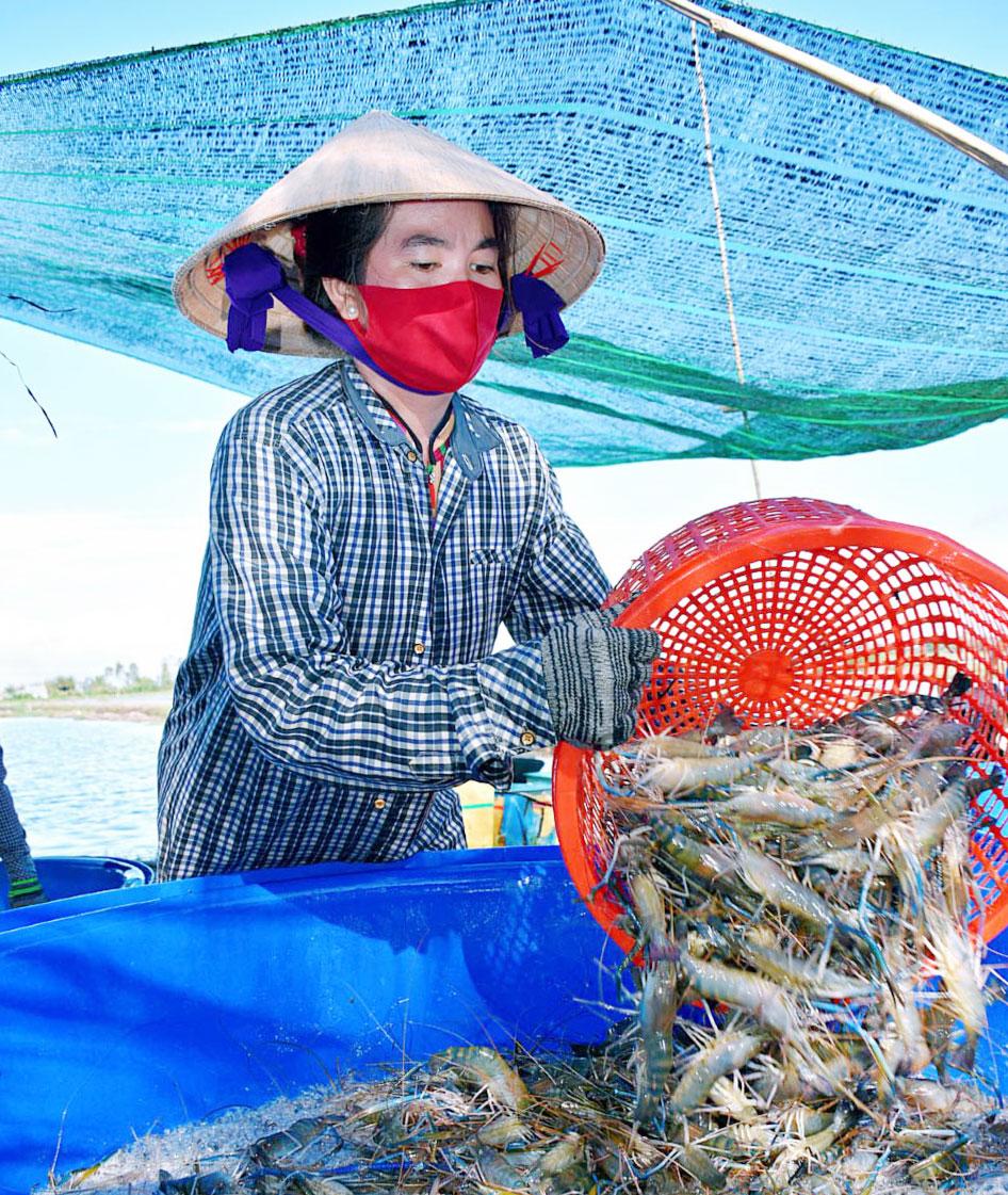 CEO Tập đoàn thủy sản Bồ Đề với khát vọng chuyên nghiệp hóa người nông dân - Ảnh 7.