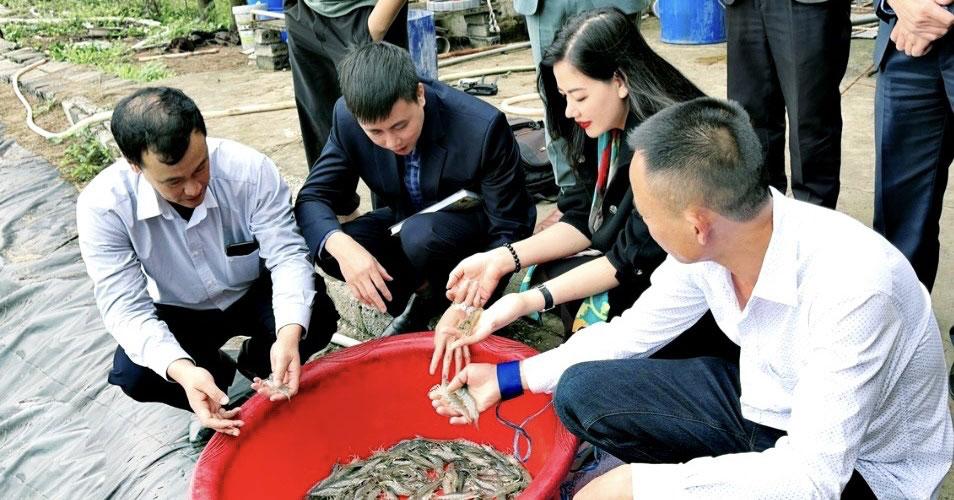 CEO Tập đoàn thủy sản Bồ Đề với khát vọng chuyên nghiệp hóa người nông dân - Ảnh 4.