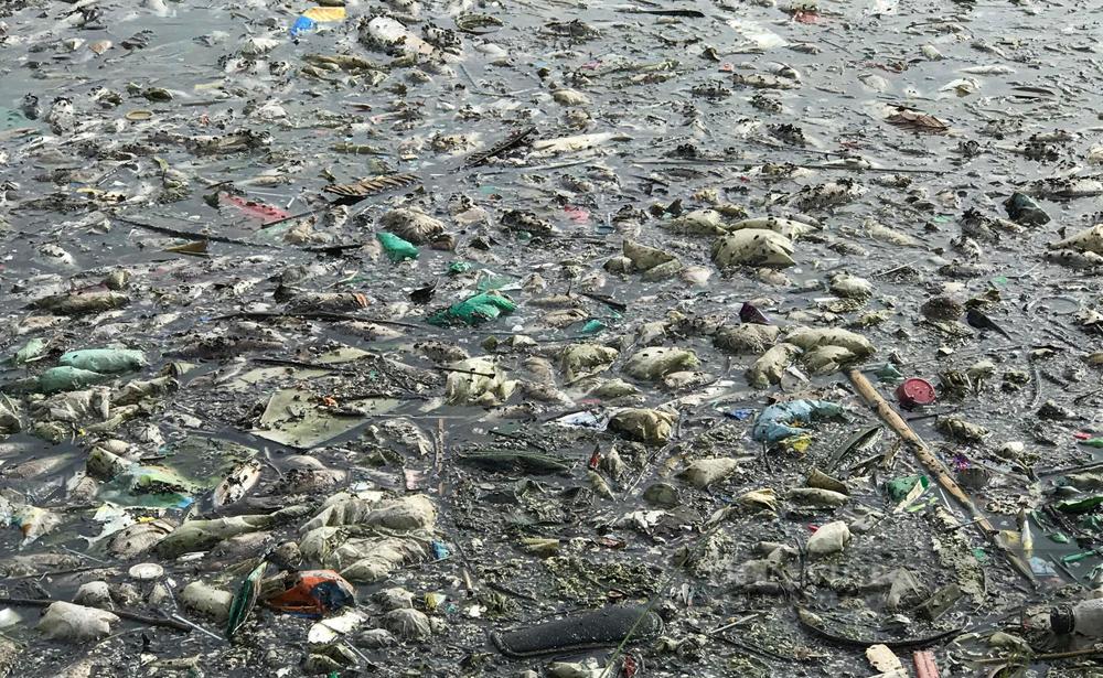 Công ty Thoát nước Hà Nội lý giải nguyên nhân cá chết hàng loạt ở hồ Yên Sở - Ảnh 2.