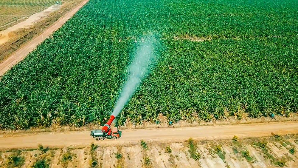 Không có chuyện THACO buông mảng nông nghiệp - Ảnh 1.