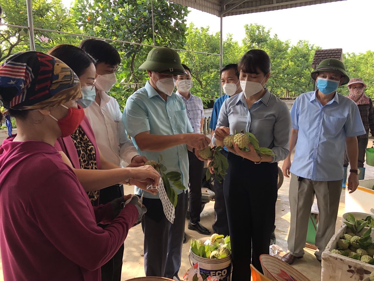 Thái Nguyên hỗ trợ nông dân kết nối tiêu thụ na giữa mùa dịch - Ảnh 2.