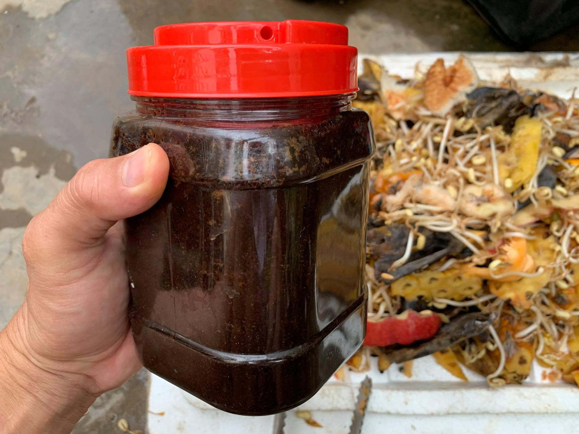 Clip: Kinh nghiệm sử dụng rác thải nhà bếp đơn giản để bón cho cây - Ảnh 3.