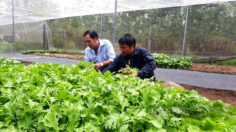 Bình Dương: Dịch Covid-19 bùng phát, Chi - tổ hội nghề nghiệp vẫn phát triển nhờ Quỹ Hỗ trợ nông dân - Ảnh 1.
