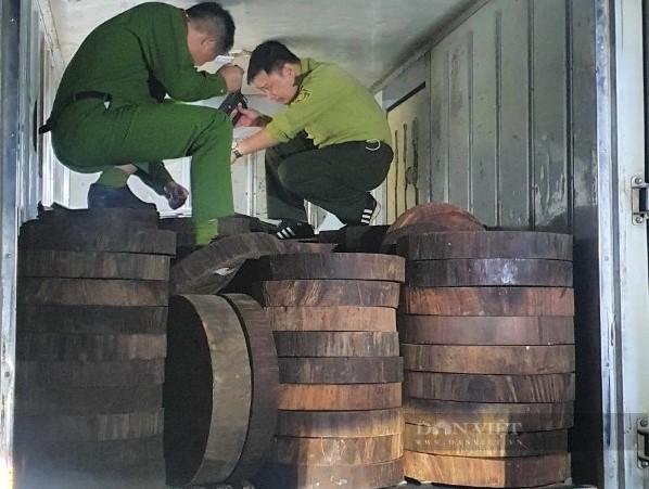 Hà Giang: Bắt giữ 278 khúc gỗ nghiến dạng thớt sau loạt bài điều tra của Dân Việt - Ảnh 2.
