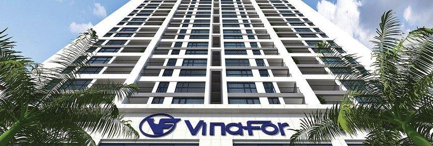 Quý II, Vinafor báo lãi tăng vọt, đạt 78 tỷ tăng 700% - Ảnh 2.