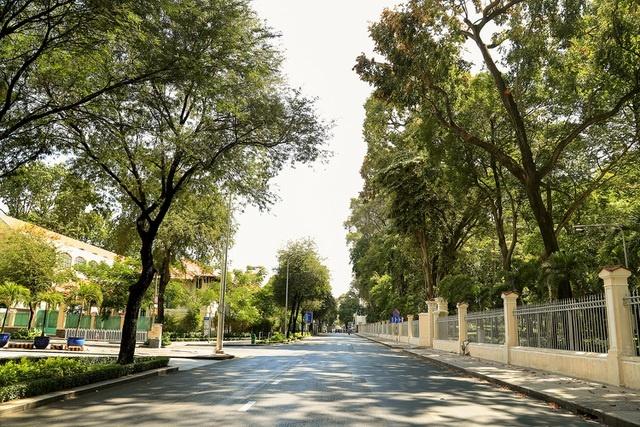 Nhật ký giãn cách: Sài Gòn ơi, ngày mai sẽ nắng đẹp (Bài 3) - Ảnh 3.
