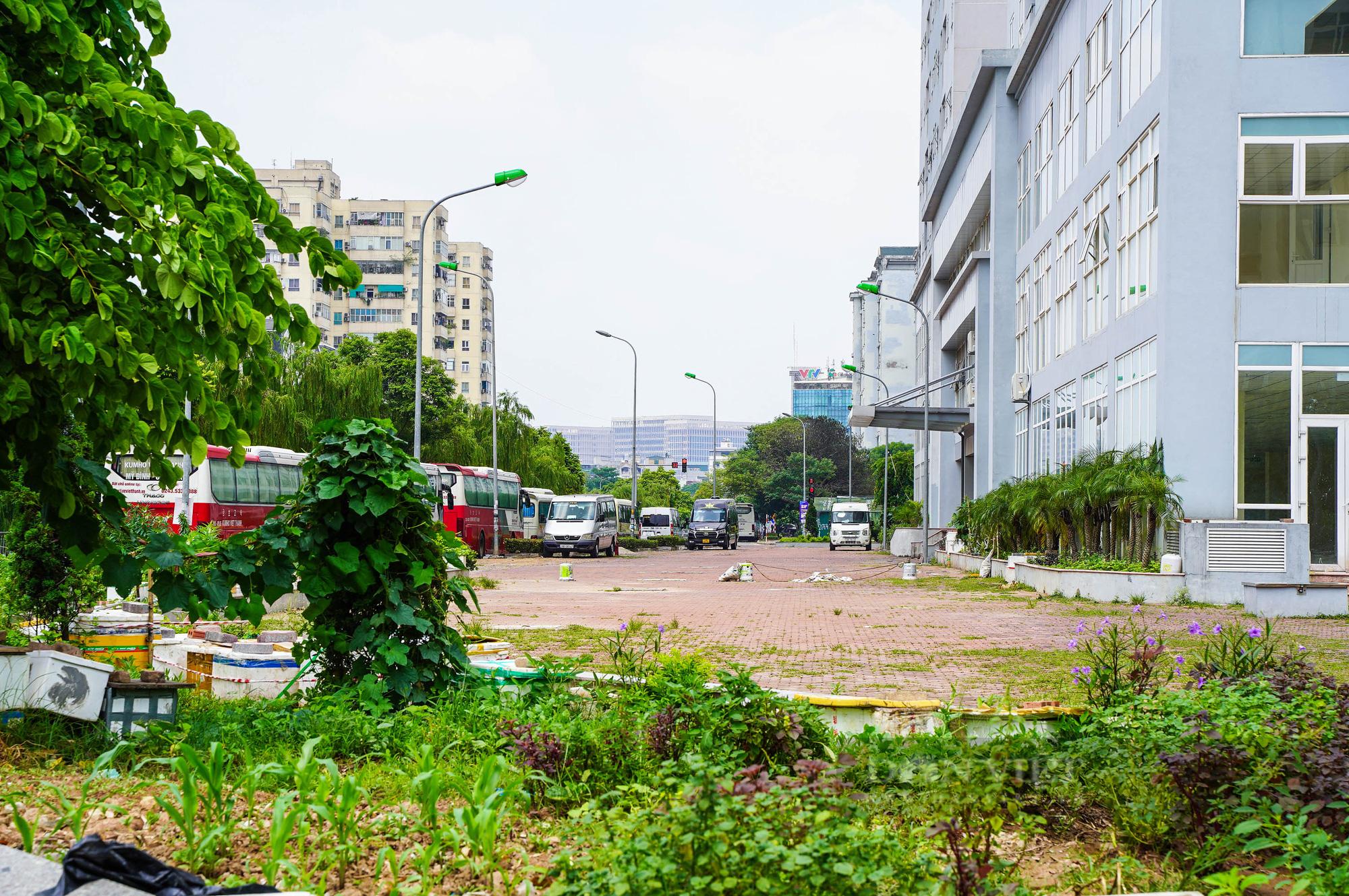 Điểm qua các khu nhà tái định cư được trưng dụng là bệnh viện dã chiến tại Hà Nội - Ảnh 6.