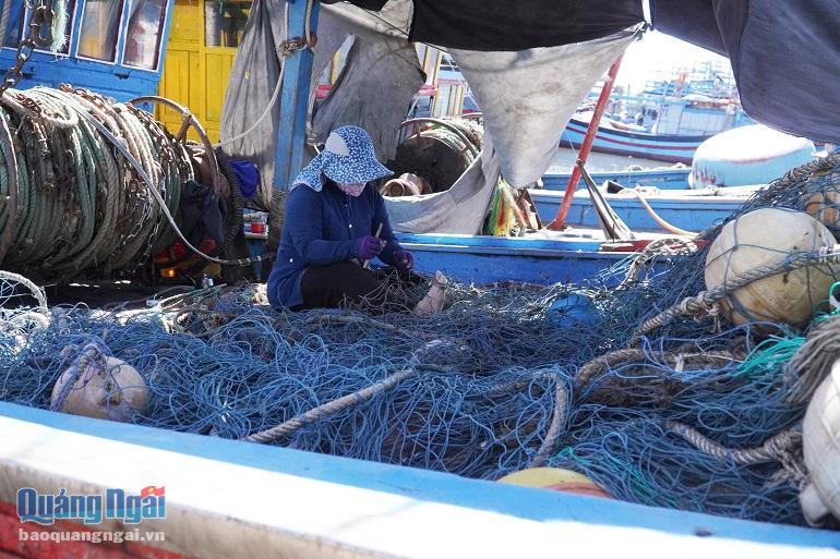 Quảng Ngãi: Không ai cấm ra khơi, nhưng vì sao nhiều tàu cá vẫn ủ ê nằm bờ? - Ảnh 4.