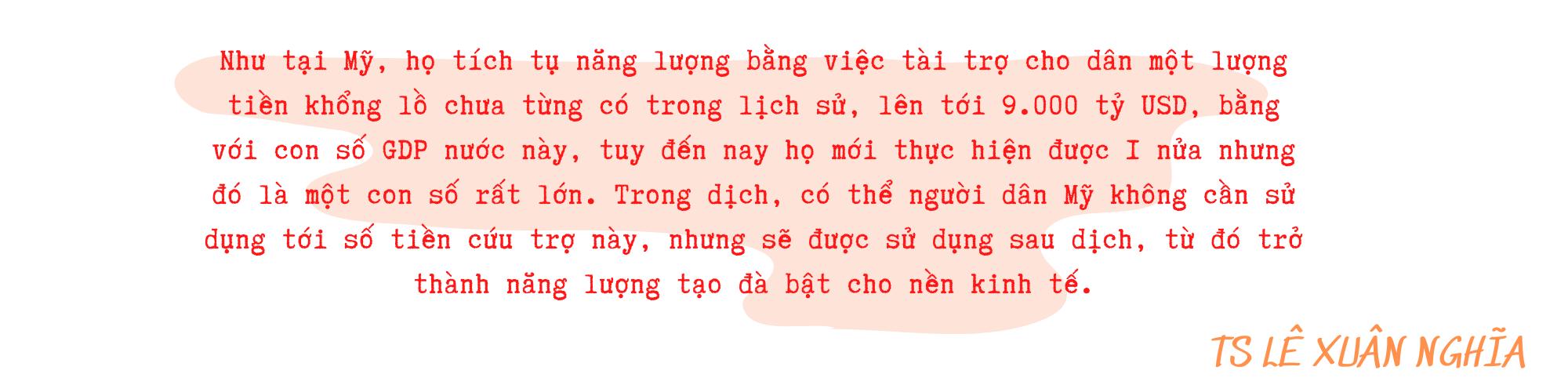 Việt Nam chuẩn bị gì để mở cửa trở lại nền kinh tế sau khi miễn dịch cộng đồng? - Ảnh 11.