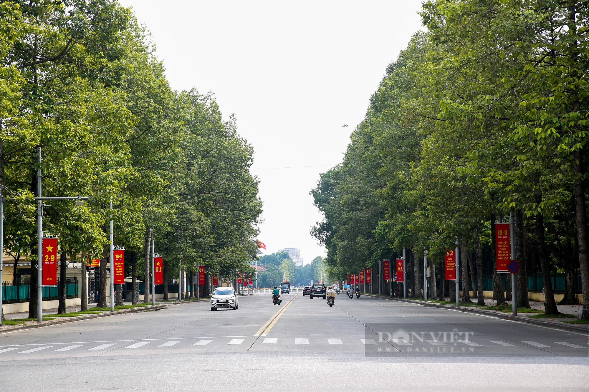 Đường phố Hà Nội rực rỡ sắc đỏ chào mừng Quốc khánh 2/9 - Ảnh 6.