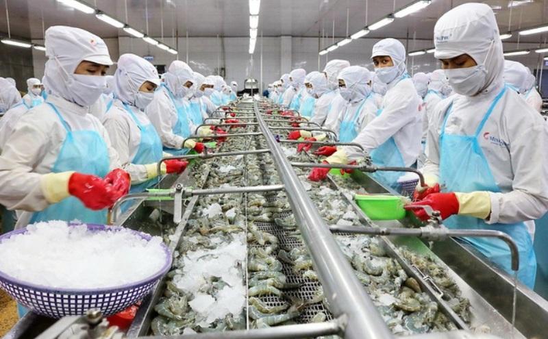 """Chỉ có 30% các doanh nghiệp thủy sản đảm bảo được điều kiện """"3 tại chỗ"""", chi phí tăng vọt - Ảnh 1."""