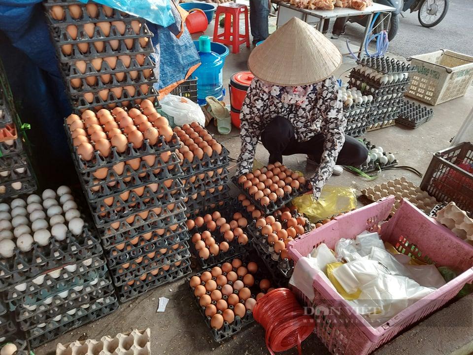 Hải Phòng: Giá  trứng gia cầm, thủy cầm tăng đột biến - Ảnh 3.