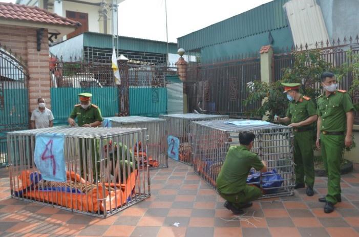 ẢNH: Bên trong hầm nuôi 17 con hổ ở Nghệ An - Ảnh 1.