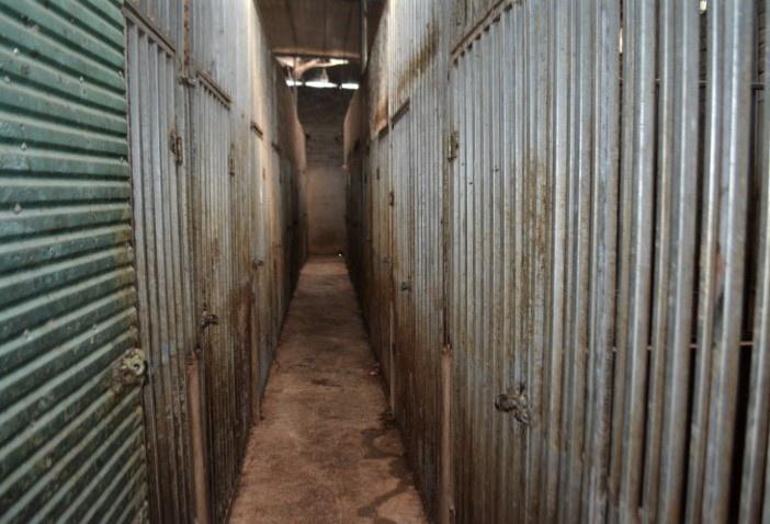 ẢNH: Bên trong hầm nuôi 17 con hổ ở Nghệ An - Ảnh 2.