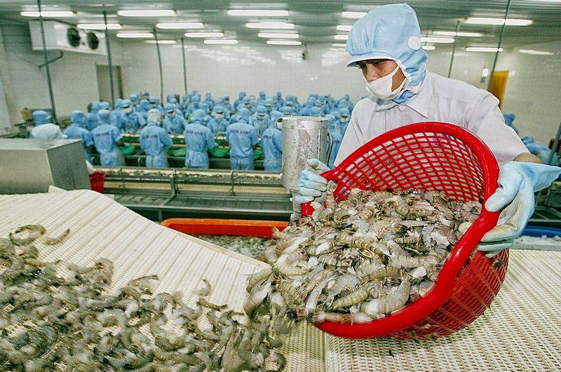 """Thủy sản Minh Phú, Canimex, Thủy sản Cà Mau """"bao"""" khách sạn xịn cho công nhân ở - Ảnh 1."""