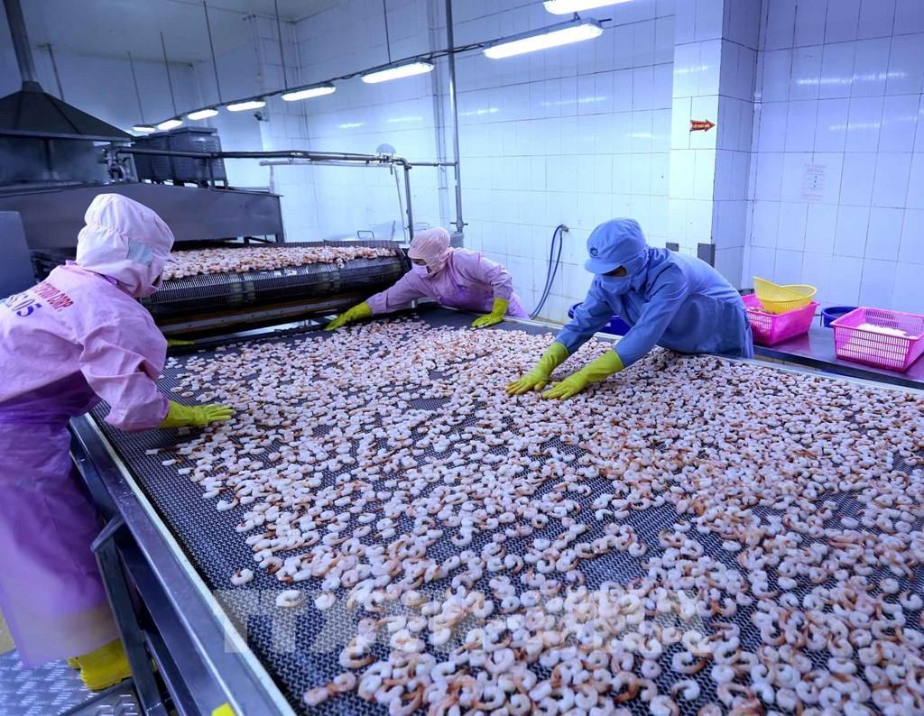 Nguy cơ khủng hoảng thiếu gia cầm, Bộ NNPTNT kiến nghị khẩn Thủ tướng tiêm vaccine cho lao động nông nghiệp - Ảnh 1.