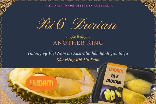"""Bất ngờ: Sầu riêng Ri6 """"cháy hàng"""" ở Úc, giá 400.000 đồng/kg vẫn mua hết sạch - Ảnh 1."""