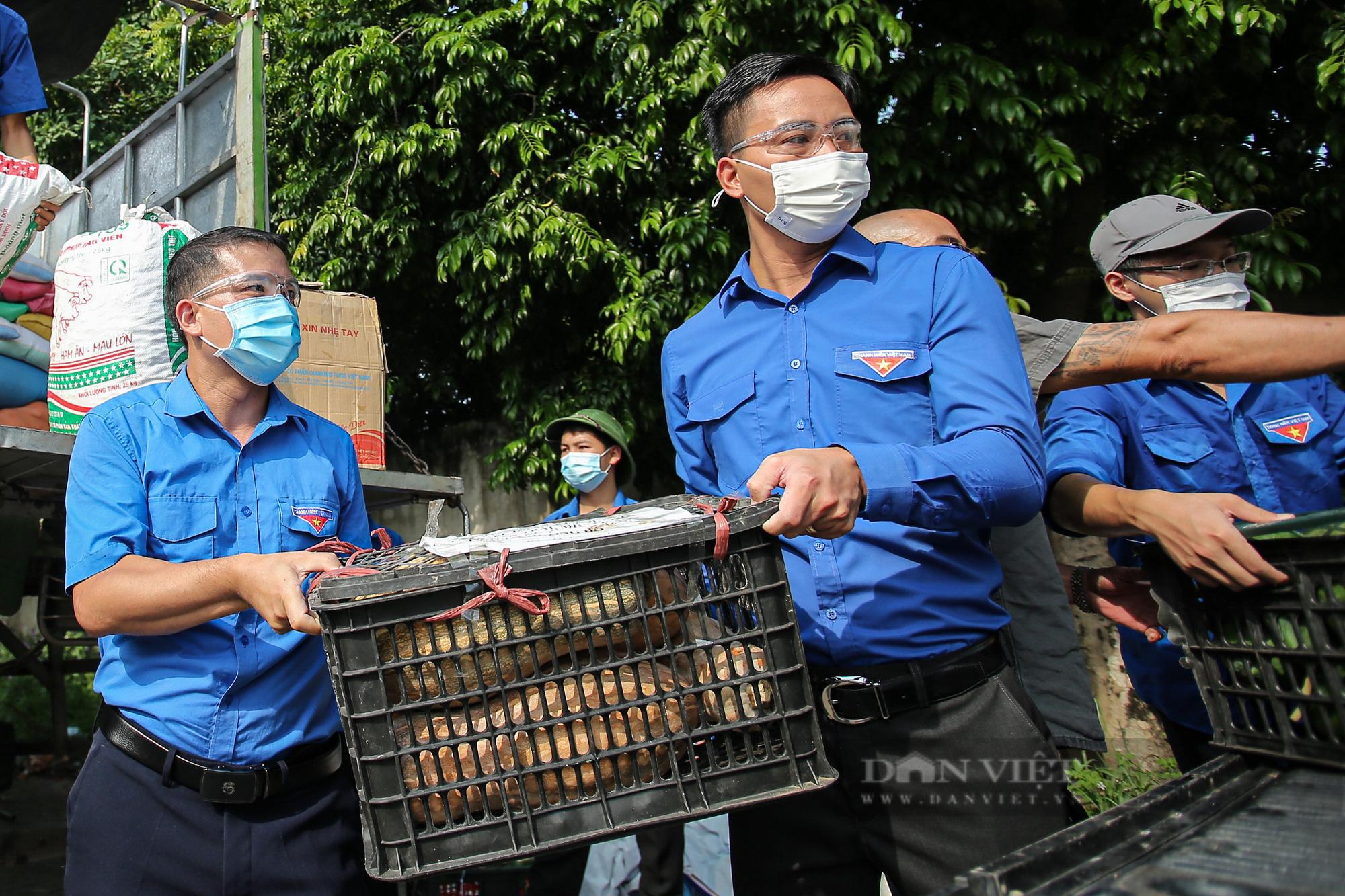 Hà Nội đón nhận 60 tấn nhu yếu phẩm từ nhân dân Hà Giang ủng hộ - Ảnh 7.